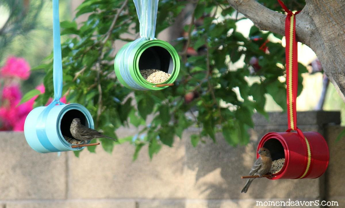 Сделать птицу своими руками из подручных материалов